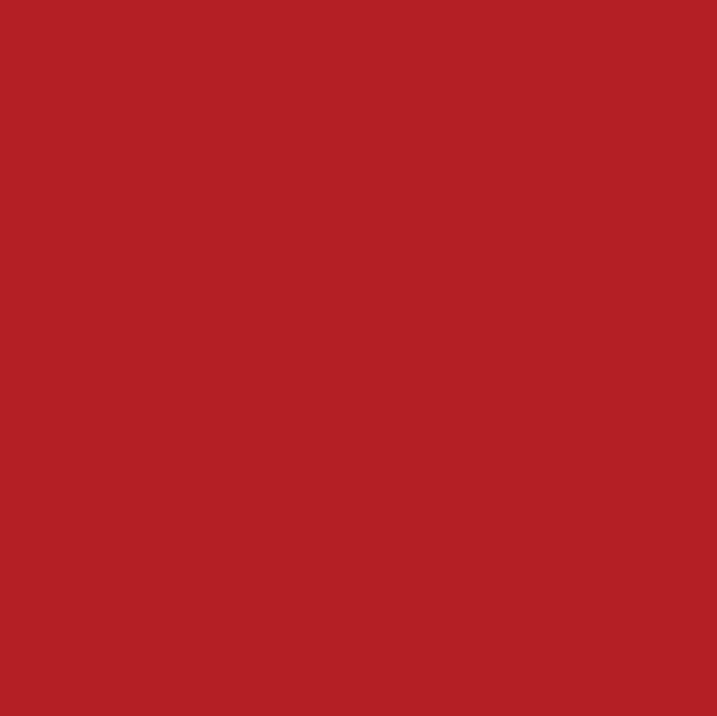 Red Anti-Pill Fleece