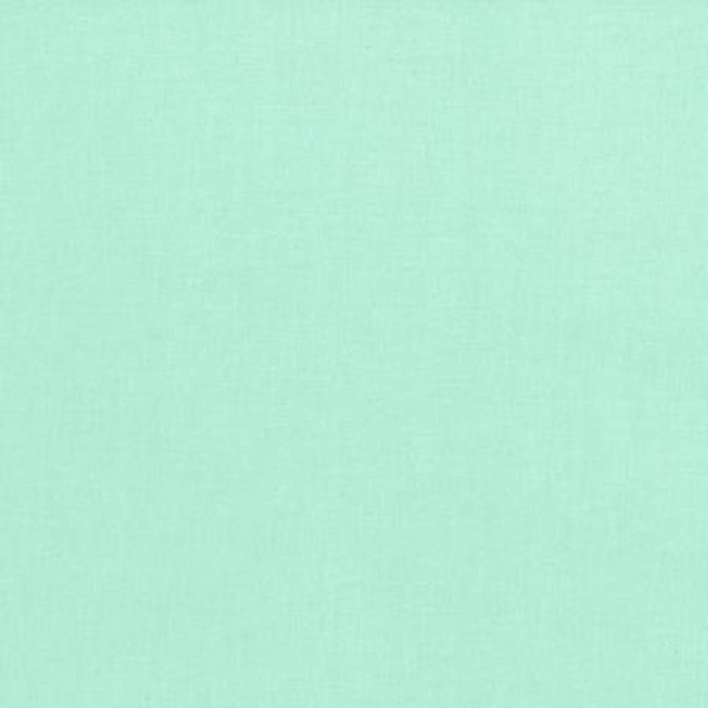 Mint Luxe Anti-Pill Fleece - 1/2 yard (DX19170A9)