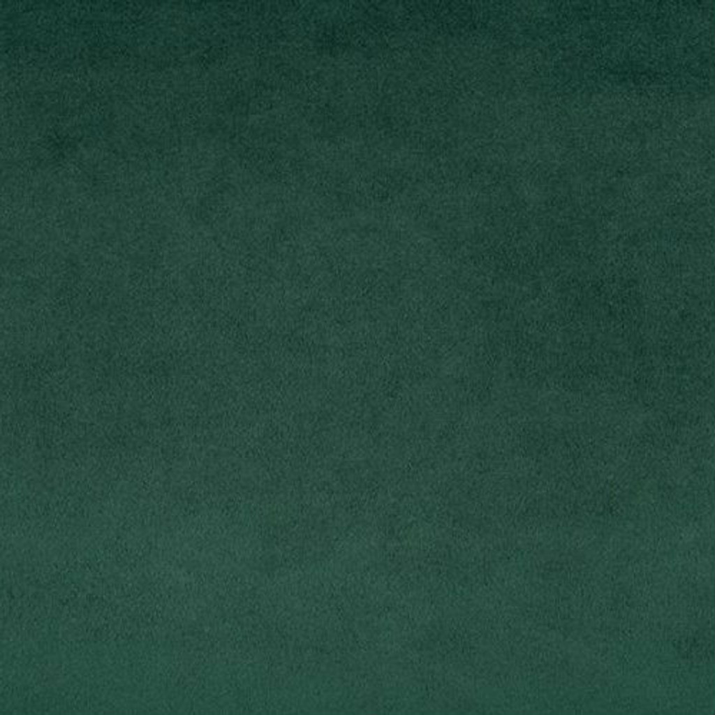 Evergreen Smooth - Shannon Fabrics Cuddle Minky - 1/2 yard