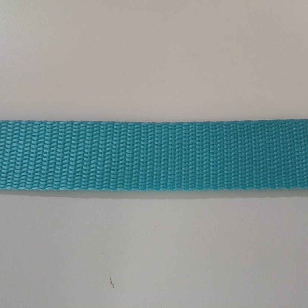 "1"" Webbing by the Yard - Aqua"