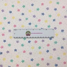 Pastel Stars - AE Nathan Flannel  (3128X-124)