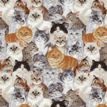 Multi Allover Cats - David Textiles Cotton - 1/2 yard (1133201B1)
