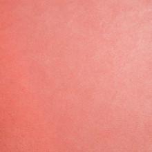 Coral Smooth - Shannon Fabrics Cuddle Minky - 1/2 yard