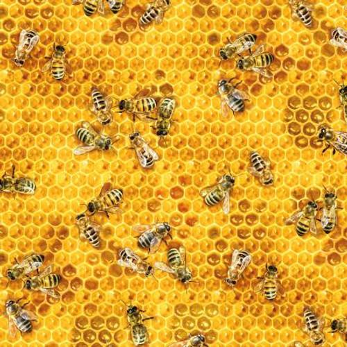Honey Bees & Beehives - Bees & Flowers - Elizabeth's Studio Cotton