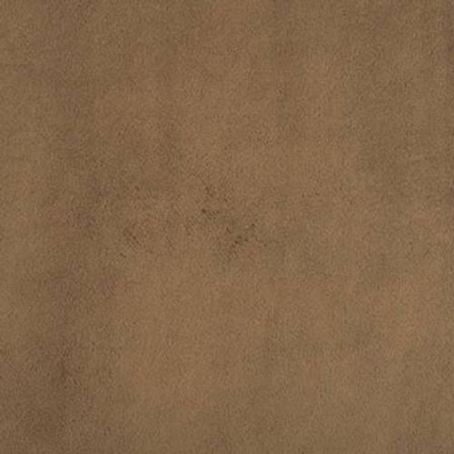Cappuccino Smooth - Shannon Fabrics Cuddle Minky