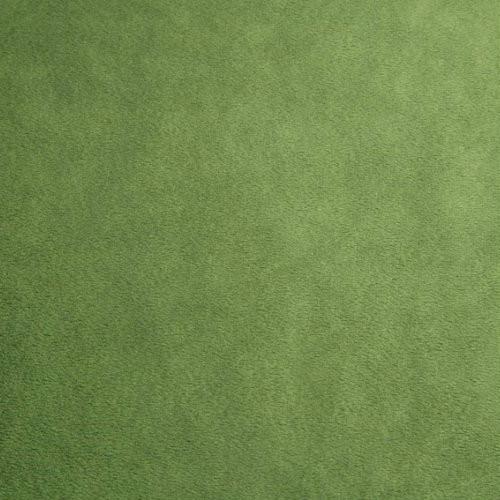 Kiwi Smooth - Shannon Fabrics Cuddle Minky - 1/2 yard