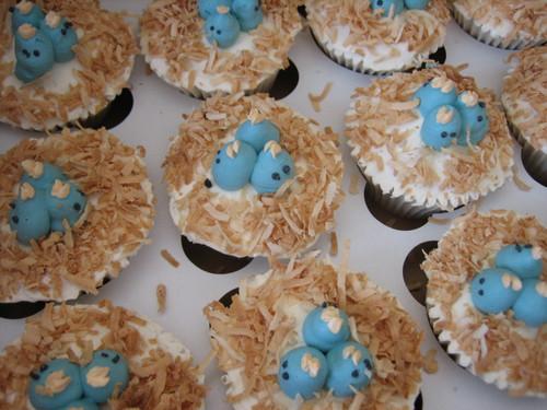 Baby Blue Bird Cupcakes