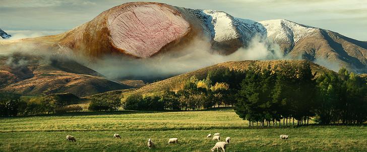 Lamb New Zealand