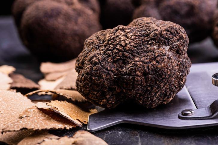 Black Autumn  Burgundy   Uncinatum Truffles