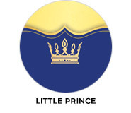 Little Prince Birthday Theme Custom Party Favours