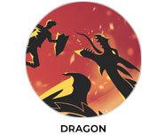 Dragon Theme Birthday Favours