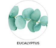 Eucalyptus Leaves Theme Custom Baby Shower Favours