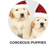 Gorgeous Puppies Theme Custom Christmas Favours