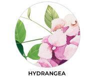 Hydrangea Wedding Theme Favours