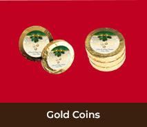 Christmas Gold Coin Chocolates