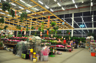 Keep the Learning Going: At the Garden Store