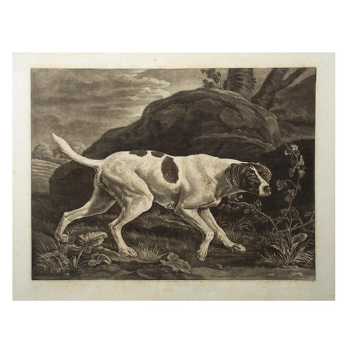 """""""Phillis, A Pointer of Lord Clermont's""""   Engraving on Paper after George Stubbs"""