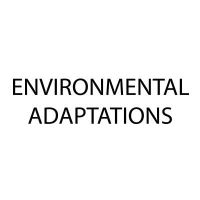environmental-adapt.jpg