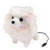 Photo #1 Switch Adapted Pretty Poodle
