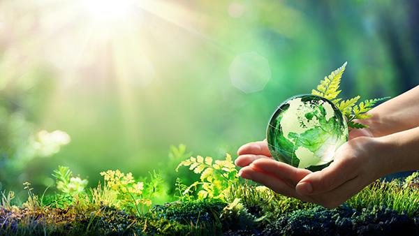 environment-600x338.jpg