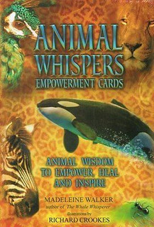 Animal Whispers Empowerment Cards by Madeleine Walker (Sealed)
