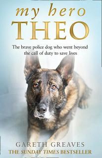 My Hero Theo by Gareth Greaves (NEW)