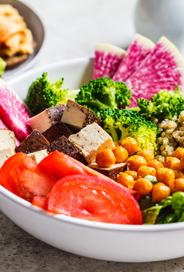 Vegetarian And Vegan