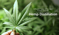 Different Types of Vacuum Pumps Used for Hemp Distillation