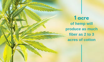 5 of the Most Valuable Uses for Industrial Hemp