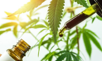 3 of the Top Professions in the Hemp Industry