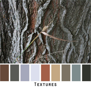 Textures - willow bark textured grey black rust bark colors for green eyes, brown eyes, brunette, redhead, black hair, gray hair - photo by Inese Iris Liepina, Wrapture by Inese
