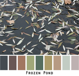 Frozen Pond - black ice with dusty pastel and mauve lichen gerrn olive brown willow leaves colors for green eyes, brown eyes, brunette, black hair - photo by Inese Iris Liepina, Wrapture by Inese