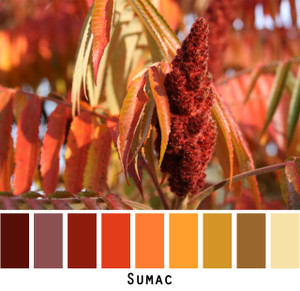 Sumac red orange gold yellow colors in a photo by Inese Iris Liepina made into a color card for custom ordering from Wrapture by Inese