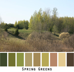 Spring Greens  in a meadow and forest setting that looks almost like a manicured landscape. Mother nature does it better. Photo by Inese Iris Liepina that can bee used for color inspiration if you want me to knit a sweater with green, olive, paprika, brown, gold.
