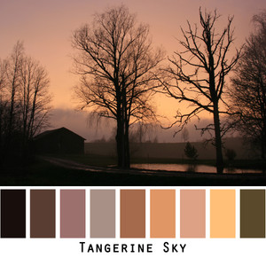 Tangerine sky photographed by Inese Iris Liepina with black silhouettes of trees and a barn with pond reflections made into a color card for custom orders from wrapture by Inese.