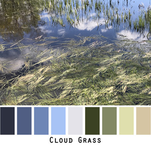 Cloud Grass color card with photograph of clouds reflected in a pond full of green grasses. photographed by Inese Iris Liepina.