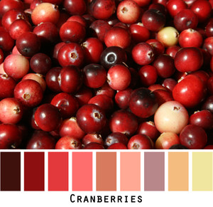 Cranberries red, wine, chartreuse Photo - Inese Iris Liepina
