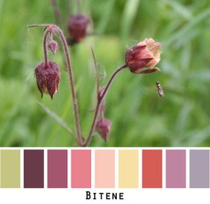 Bitene - raisin dusty rose peach butter yellow violet rust colors for blue eyes, green eyes, brown eyes, blonde hair, brunette, redhead, black hair, gray hair - photo by Inese Iris Liepina, Wrapture by Inese