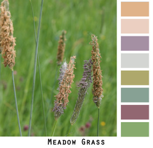 Meadow Grass - beoge dusty lavender dusty rose grass green grey gray timothy in a field colors for green eyes, brown eyes, blonde hair, brunette, redhead, black hair - photo by Inese Iris Liepina, Wrapture by Inese