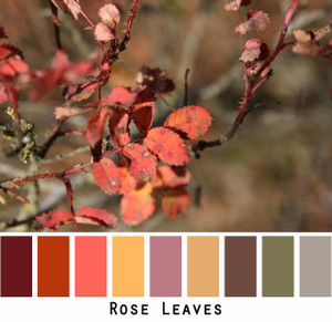 Rose Leaves dark wine red mango yellow gold mauve olive grey brown photograph by Inese iris Liepina