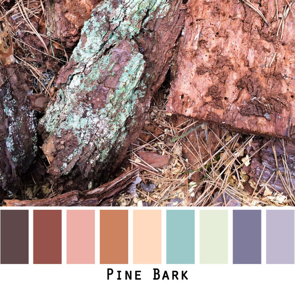 Pine Bark rust, sage, seafoam, brown, gold, purple photo by Inese Iris Liepina in a color card for custom ordering from Wrapture by Inese