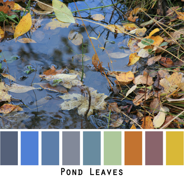 Pond Leaves - reflection of blue sky and golden green leaves in a pond, colors for blue eyes, green eyes, brown eyes, brunette, redhead, black hair - photo by Inese Iris Liepina, Wrapture by Inese