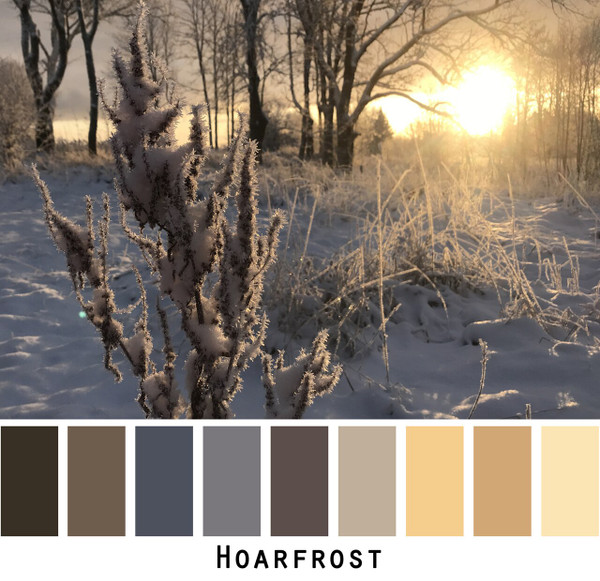 Hoarfrost photographed by Inese Iris Liepina and made into a color card for custom ordering from Wrapture by Inese
