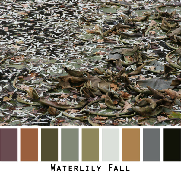 Waterlily Fall - brown raisin olive taupe charcoal black colors on a frozen waterlily pond colors for green eyes, brown eyes,  brunette, redhead, black hair, gray hair - photo by Inese Iris Liepina, Wrapture by Inese