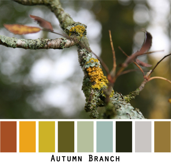 Autumn Branch - rust gold olive green sage seafoam black grey tree branch colors for green eyes, brown eyes, blonde hair, brunette redhead, grey hair - photo by Inese Iris Liepina, Wrapture by Inese