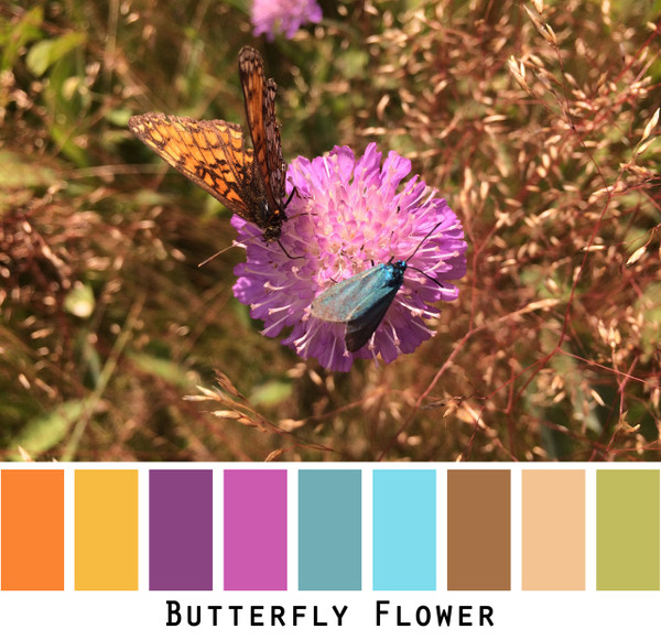 Butterfly Flower - pink turquoise orange yellow lime green magenta bright colors  for blue eyes, green eyes, brown eyes, blonde hair, brunette - photo by Inese Iris Liepina, Wrapture by Inese