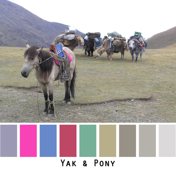 yak & pony -grey gray sage green dusty olive bright hot pink red bright blue grass green colors for blue eyes, green eyes, brown eyes, blonde hair, brunette, redhead, black hair, gray hair - photo by Inese Iris Liepina, Wrapture by Inese