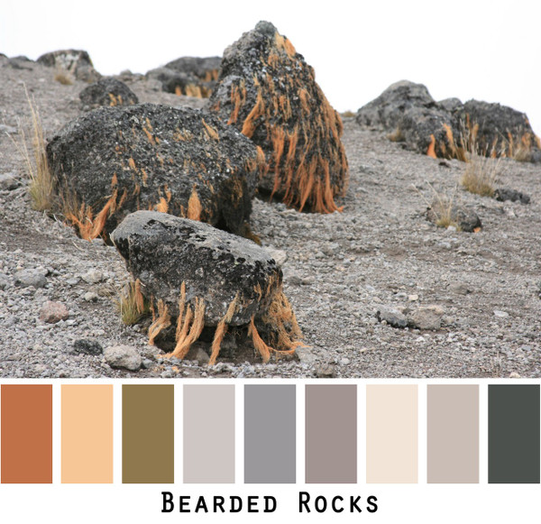 Bearded Rocks colors in a photo by Inese Iris Liepina made into a color card for custom ordering from Wrapture by Inese