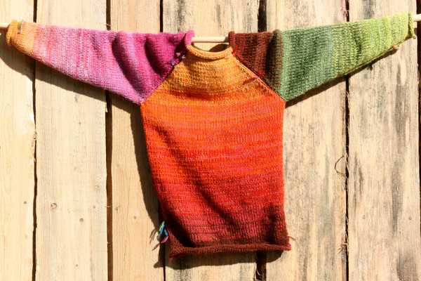 Echinacea pink orange lime green brown kids raglan pullover sweater Wrapture by Inese