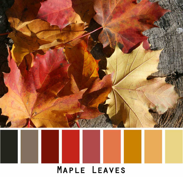 Maple Leaves red orange rust wine black grey gold photograph by Inese Iris Liepina
